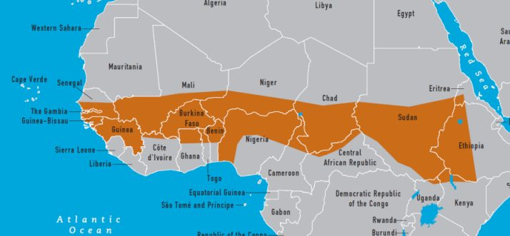 African-Meningitis-Outbreak-1996-1997