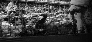 Hillsborough-Stadium-Disaster-1989